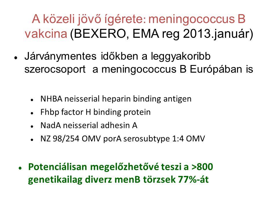 A közeli jövő ígérete: meningococcus B vakcina (BEXERO, EMA reg 2013