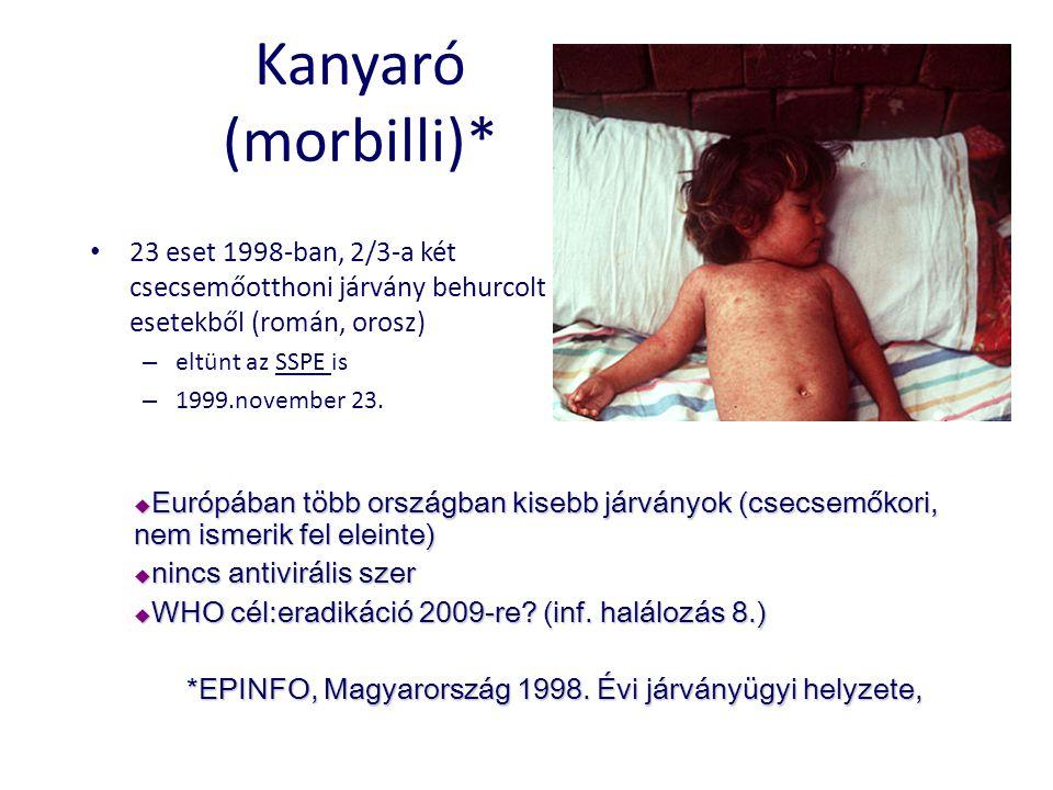 Kanyaró (morbilli)* 23 eset 1998-ban, 2/3-a két csecsemőotthoni járvány behurcolt esetekből (román, orosz)