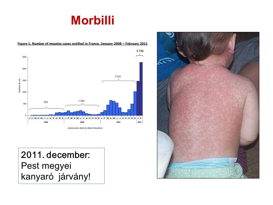 Morbilli 2011. december: Pest megyei kanyaró járvány!