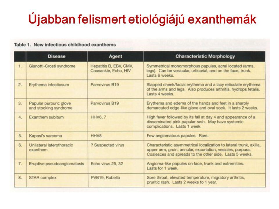 Újabban felismert etiológiájú exanthemák