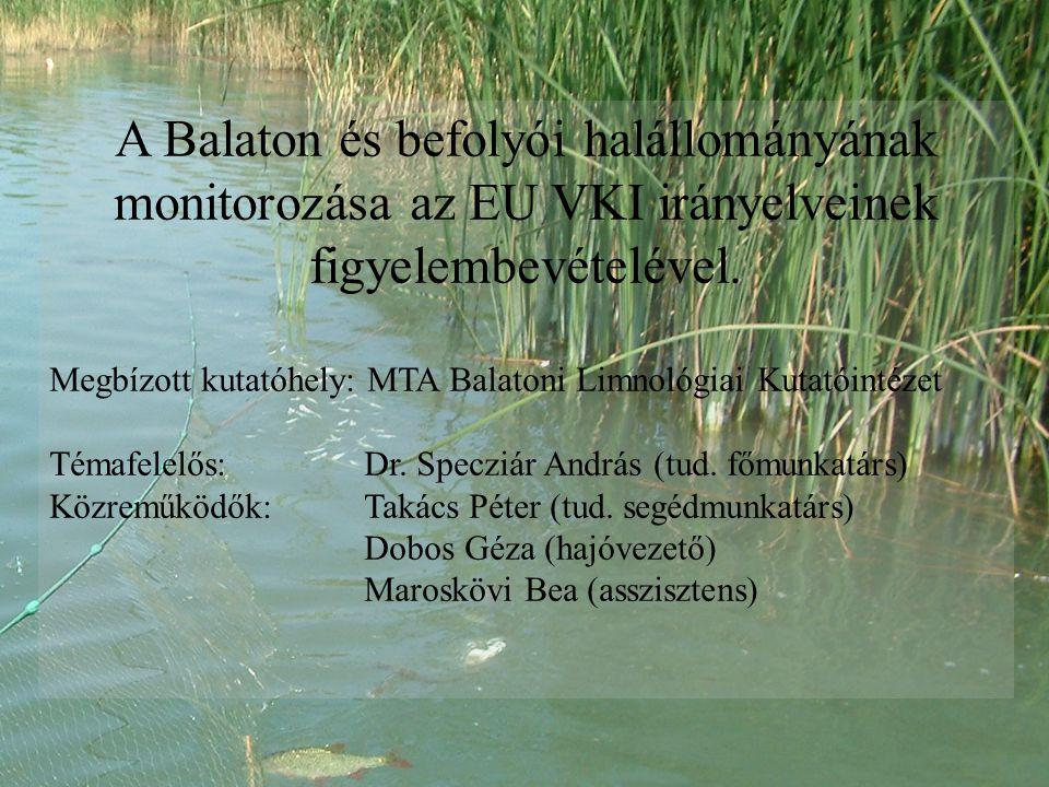 A Balaton és befolyói halállományának monitorozása az EU VKI irányelveinek figyelembevételével.