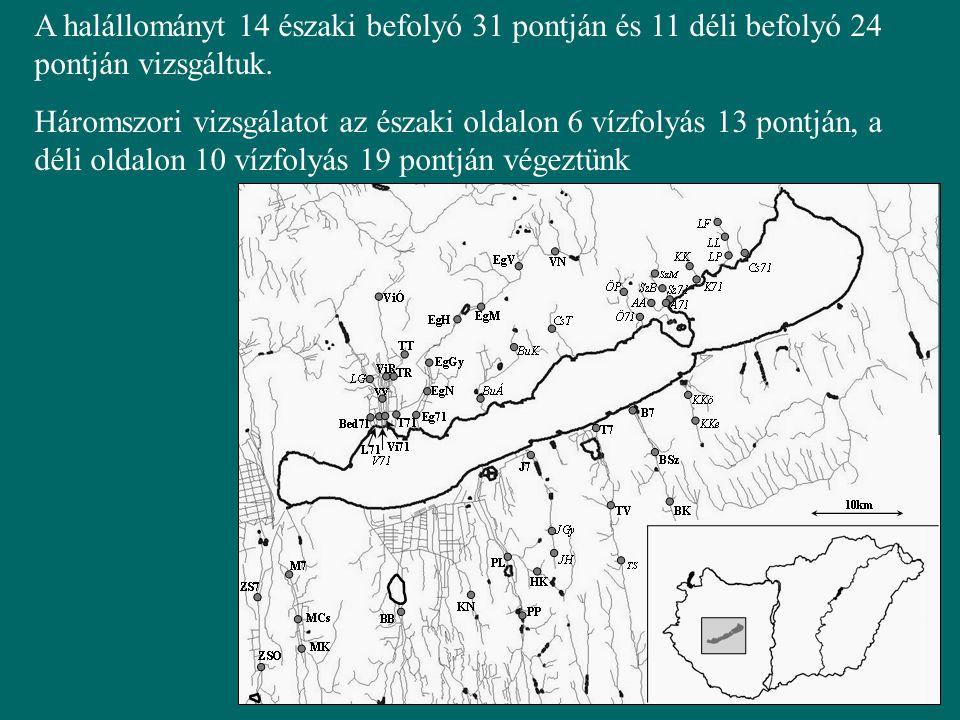 A halállományt 14 északi befolyó 31 pontján és 11 déli befolyó 24 pontján vizsgáltuk.