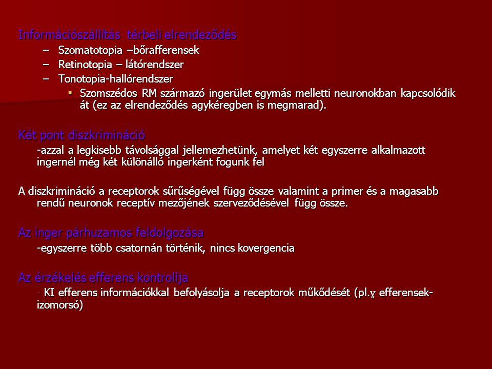 Információszállítás térbeli elrendeződés