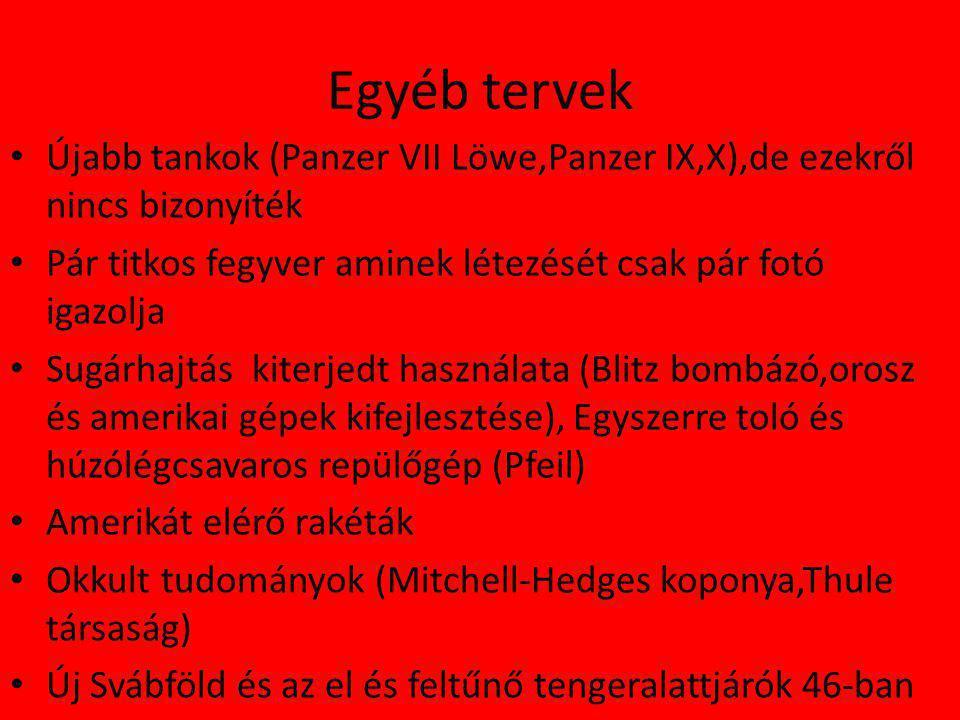Egyéb tervek Újabb tankok (Panzer VII Löwe,Panzer IX,X),de ezekről nincs bizonyíték. Pár titkos fegyver aminek létezését csak pár fotó igazolja.