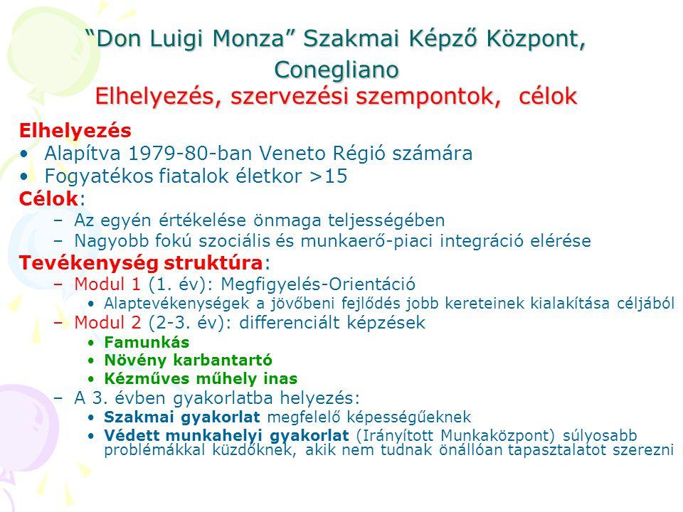 Don Luigi Monza Szakmai Képző Központ, Conegliano Elhelyezés, szervezési szempontok, célok