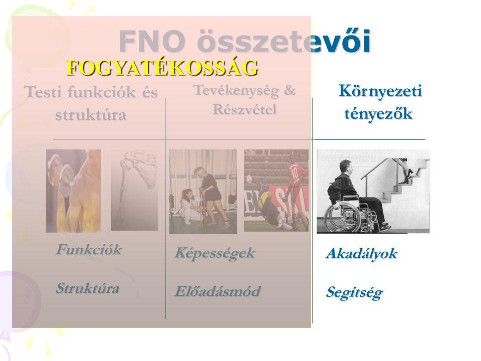 Testi funkciók és struktúra Tevékenység & Részvétel