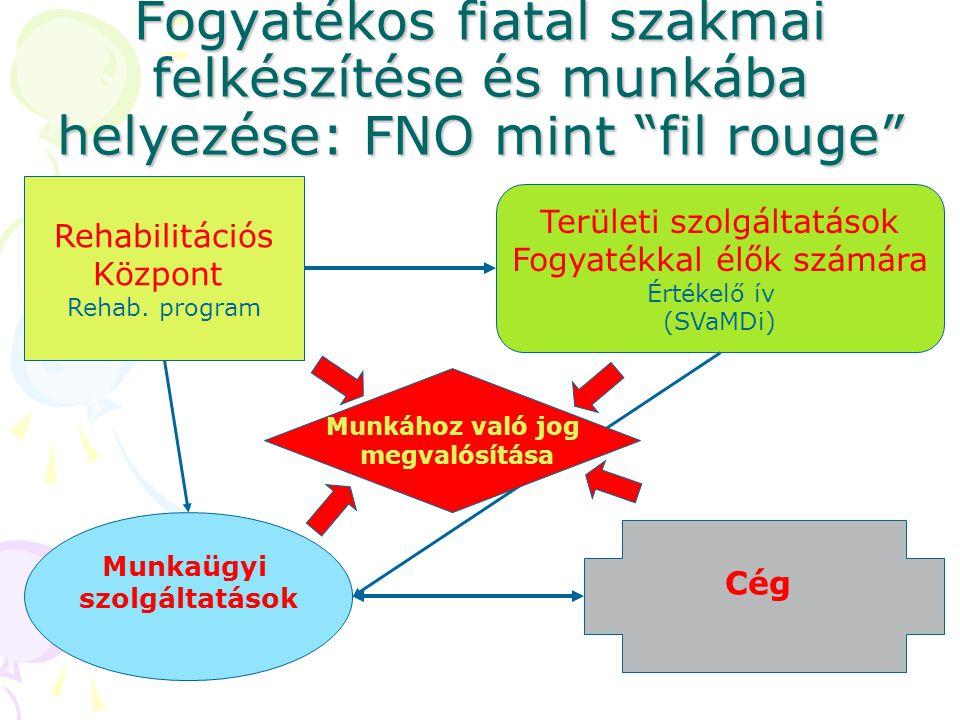 Fogyatékos fiatal szakmai felkészítése és munkába helyezése: FNO mint fil rouge