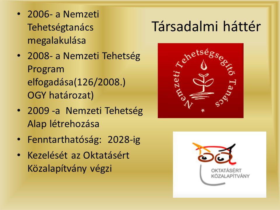 Társadalmi háttér 2006- a Nemzeti Tehetségtanács megalakulása