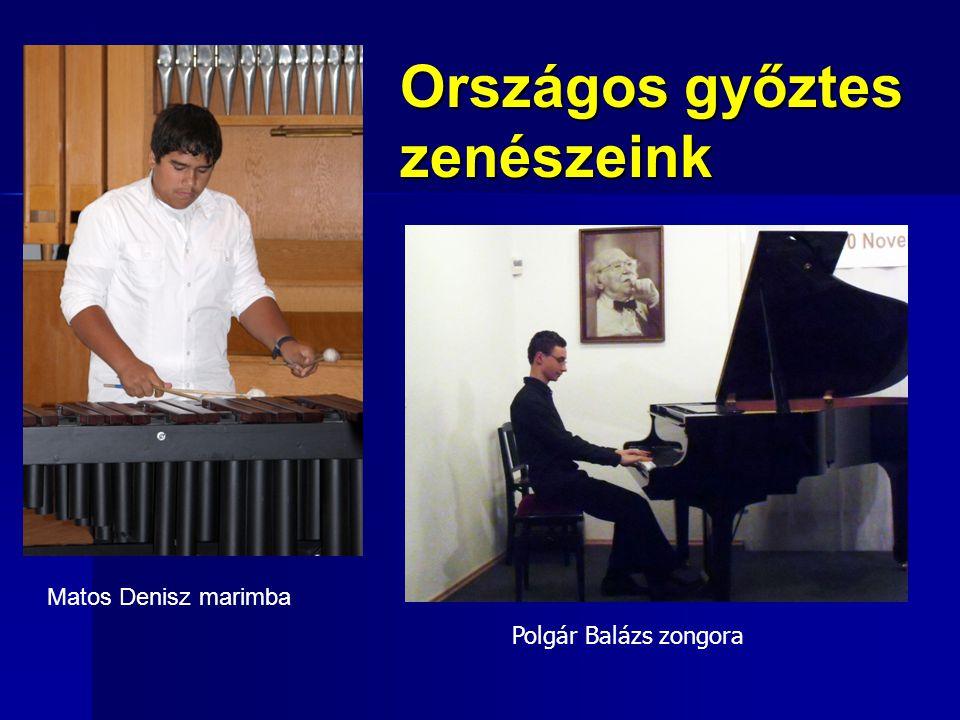 Országos győztes zenészeink