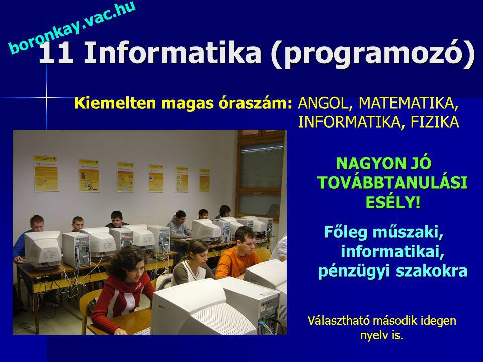 11 Informatika (programozó)