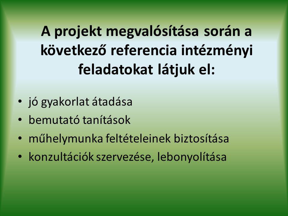 A projekt megvalósítása során a következő referencia intézményi feladatokat látjuk el: