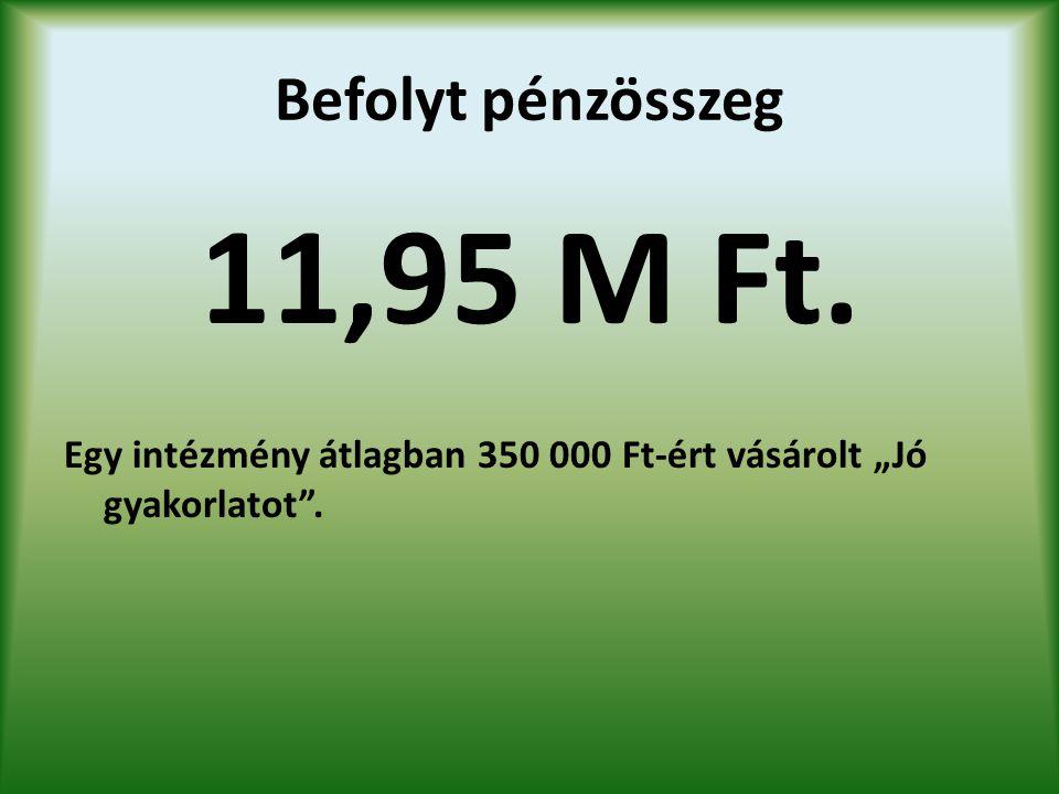 11,95 M Ft. Befolyt pénzösszeg