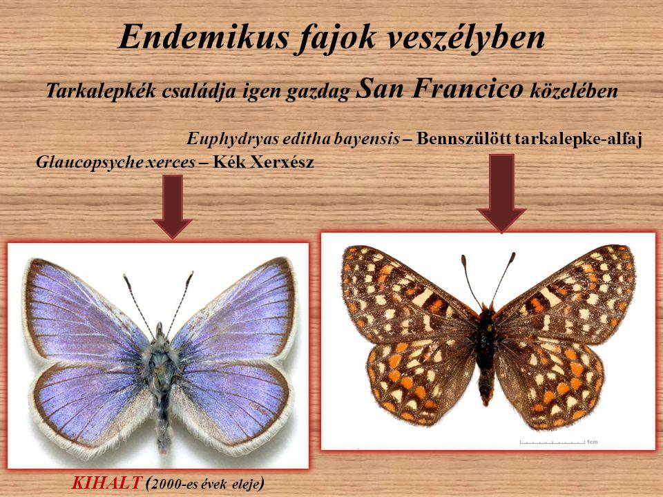 Endemikus fajok veszélyben