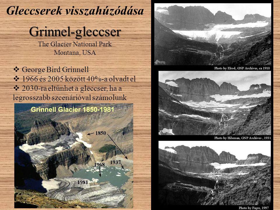 Gleccserek visszahúzódása