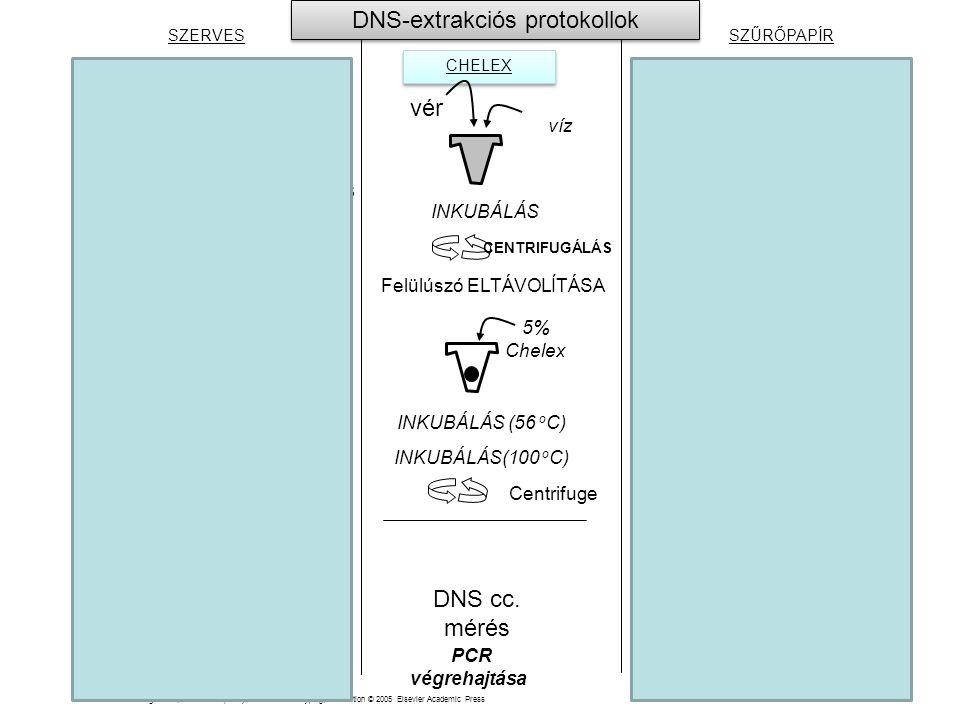 DNS-extrakciós protokollok