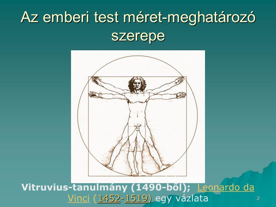 Az emberi test méret-meghatározó szerepe