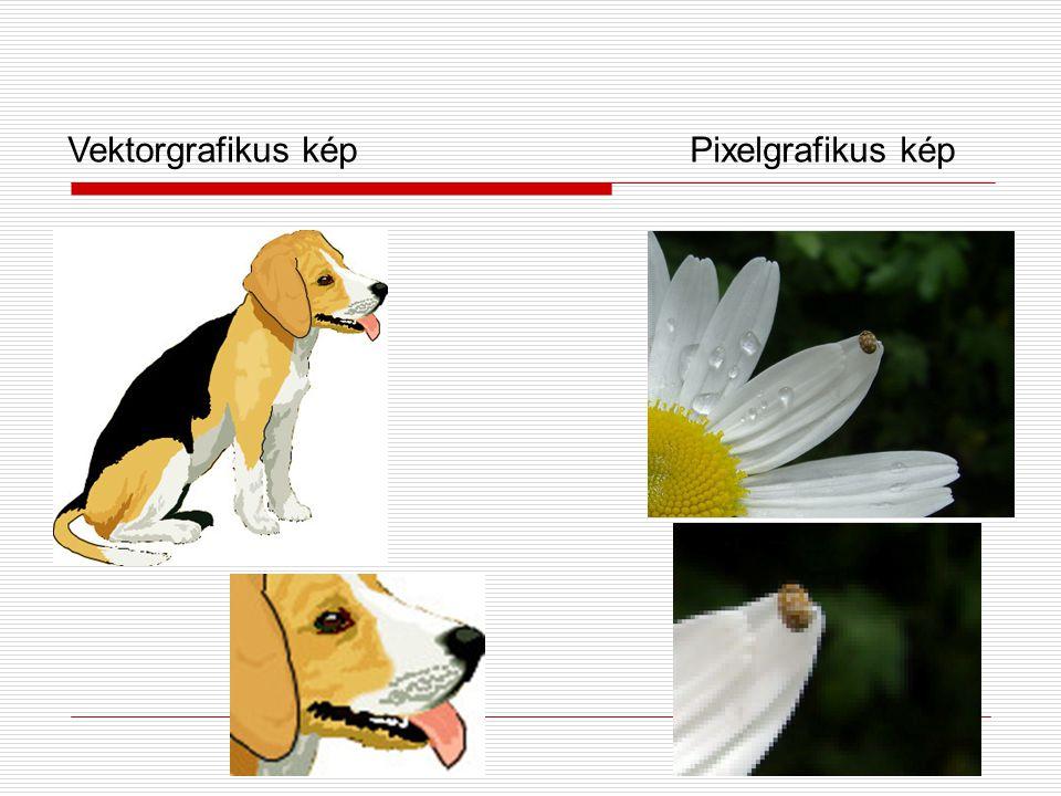 Vektorgrafikus kép Pixelgrafikus kép