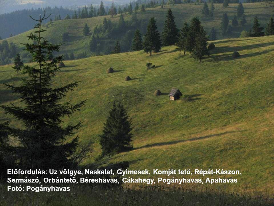 Előfordulás: Uz völgye, Naskalat, Gyímesek, Komját tető, Répát-Kászon, Sermászó, Orbántető, Béreshavas, Cákahegy, Pogányhavas, Apahavas