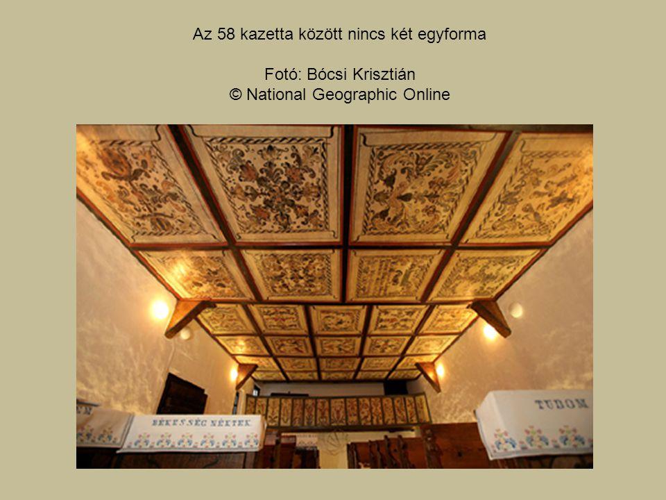Az 58 kazetta között nincs két egyforma Fotó: Bócsi Krisztián © National Geographic Online