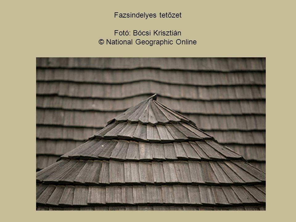 Fazsindelyes tetőzet Fotó: Bócsi Krisztián © National Geographic Online
