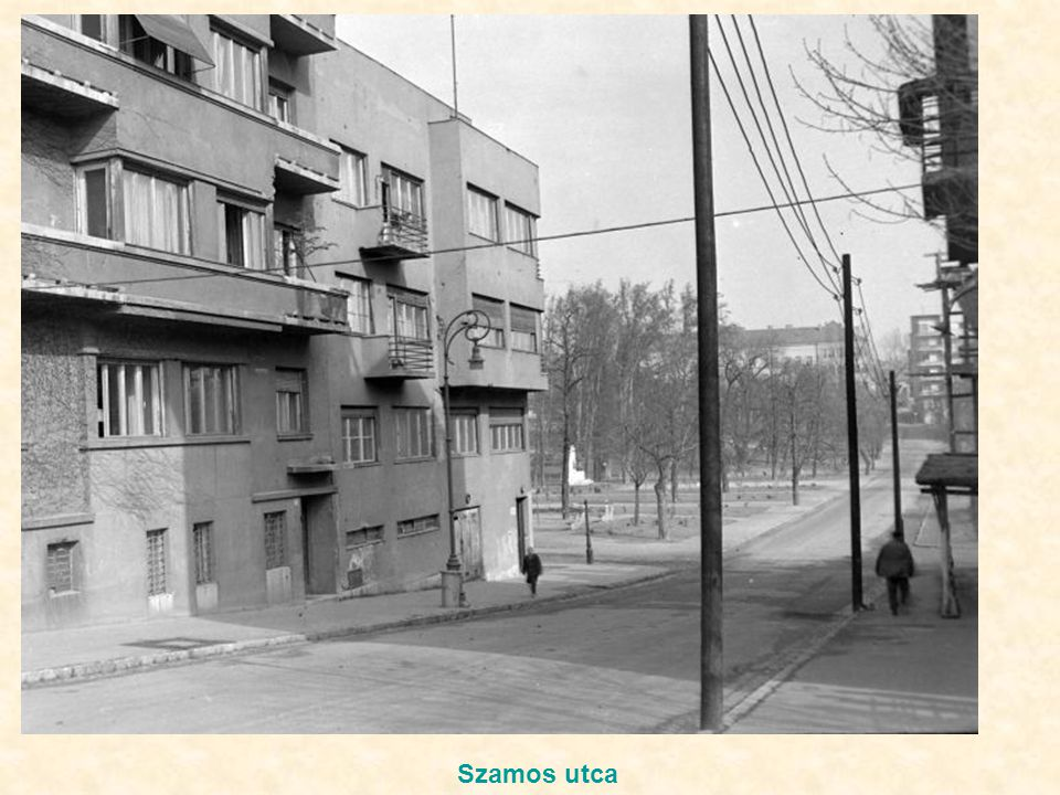 Szamos utca
