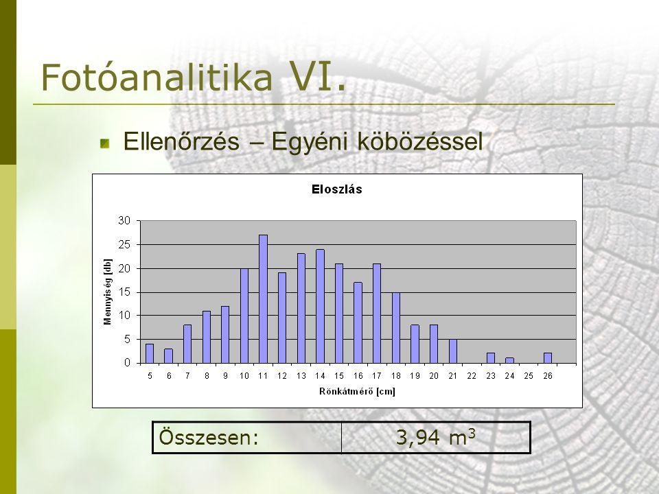 Fotóanalitika VI. Ellenőrzés – Egyéni köbözéssel Összesen: 3,94 m3