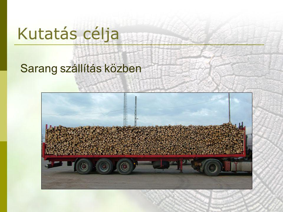 Kutatás célja Sarang szállítás közben
