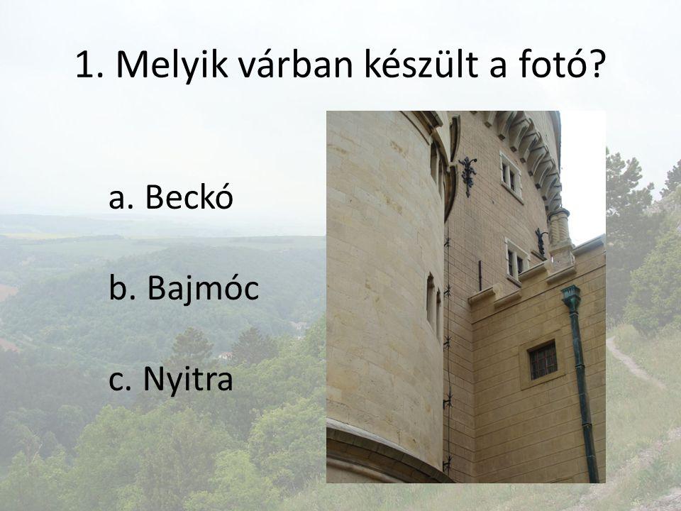1. Melyik várban készült a fotó