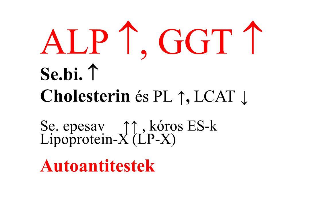 ALP , GGT  Se.bi.  Cholesterin és PL ↑, LCAT ↓