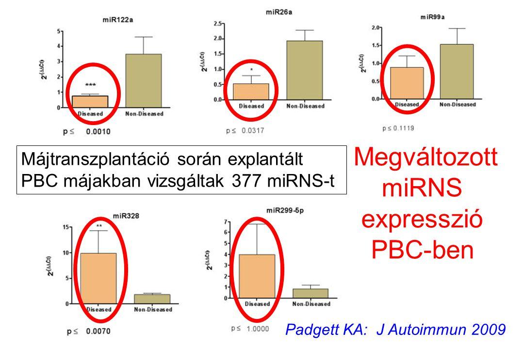 Megváltozott miRNS expresszió PBC-ben