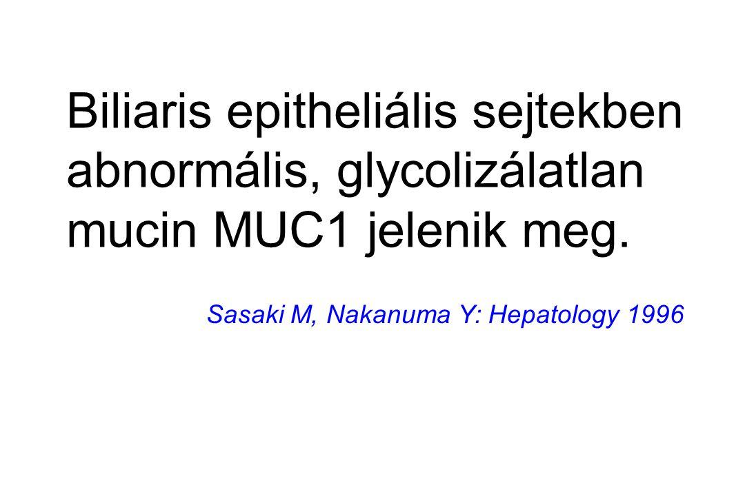 Biliaris epitheliális sejtekben abnormális, glycolizálatlan mucin MUC1 jelenik meg.