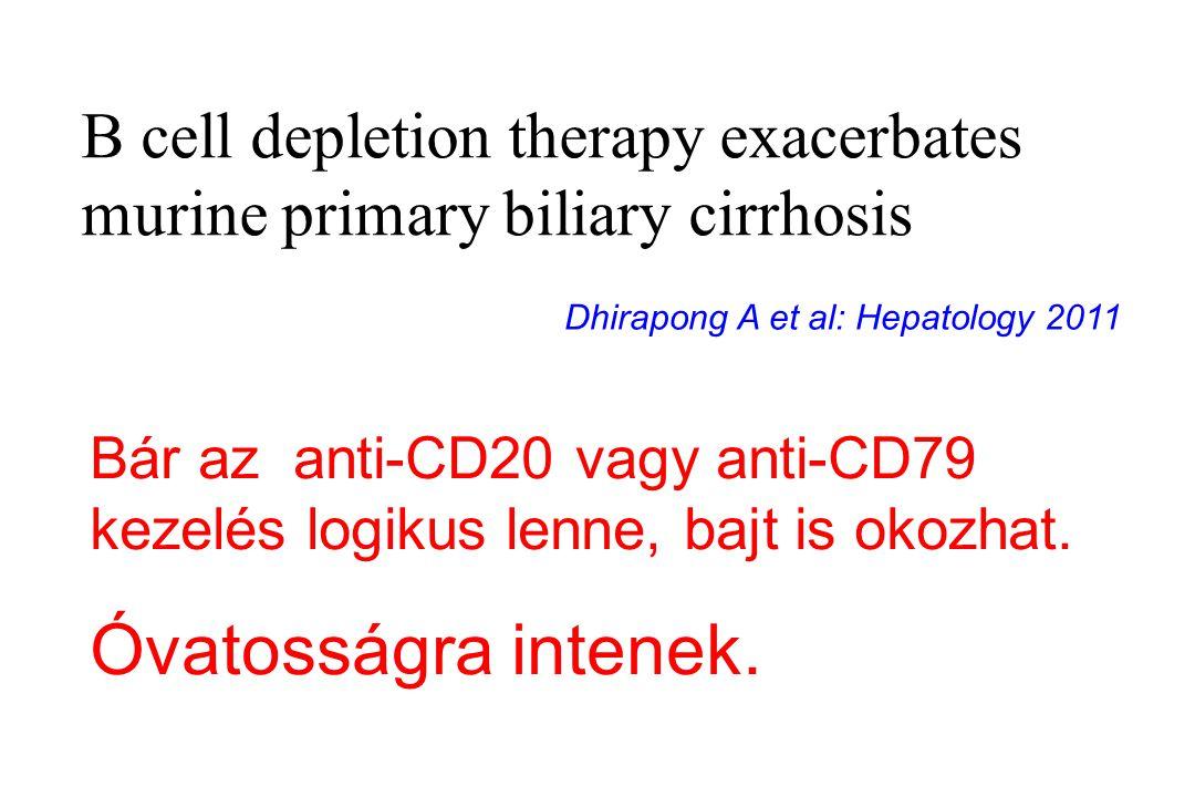 B cell depletion therapy exacerbates murine primary biliary cirrhosis