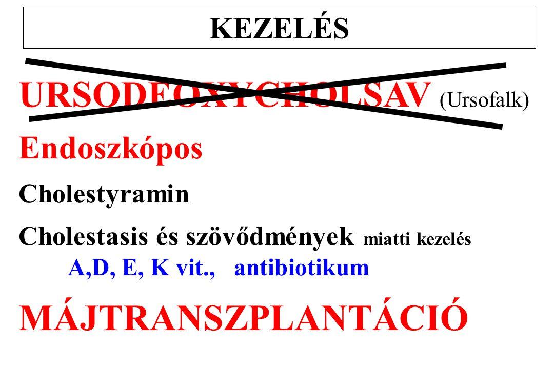 URSODEOXYCHOLSAV (Ursofalk)