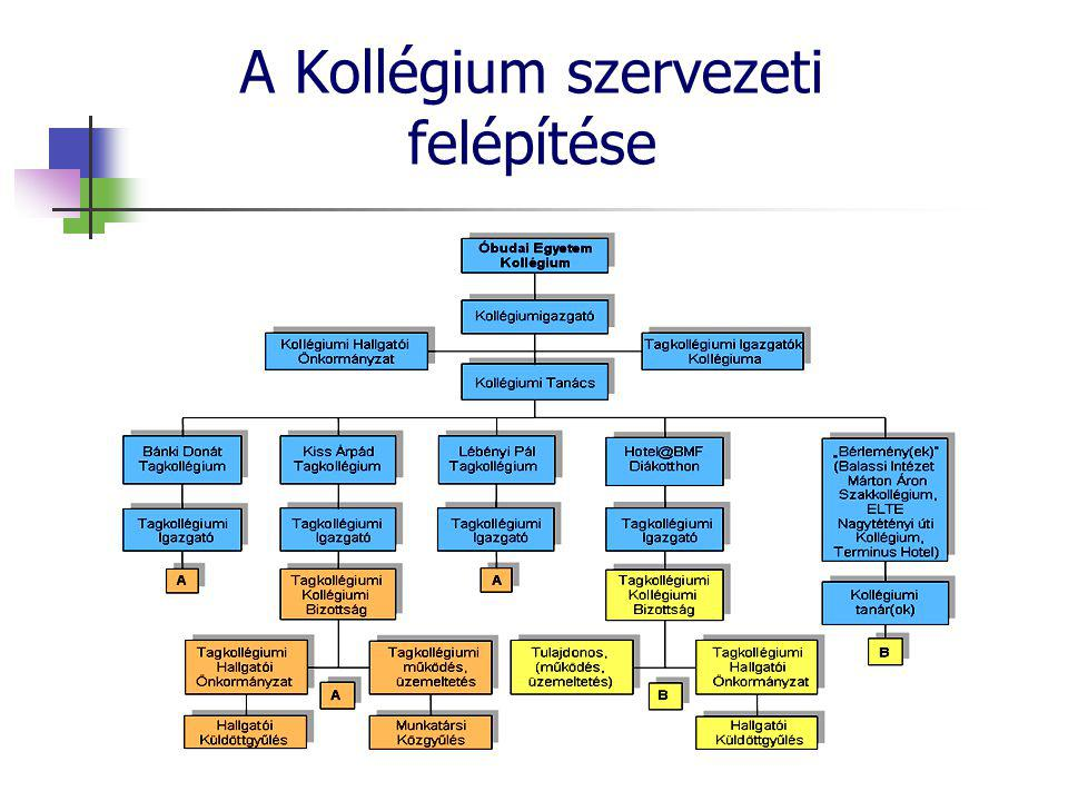 A Kollégium szervezeti felépítése