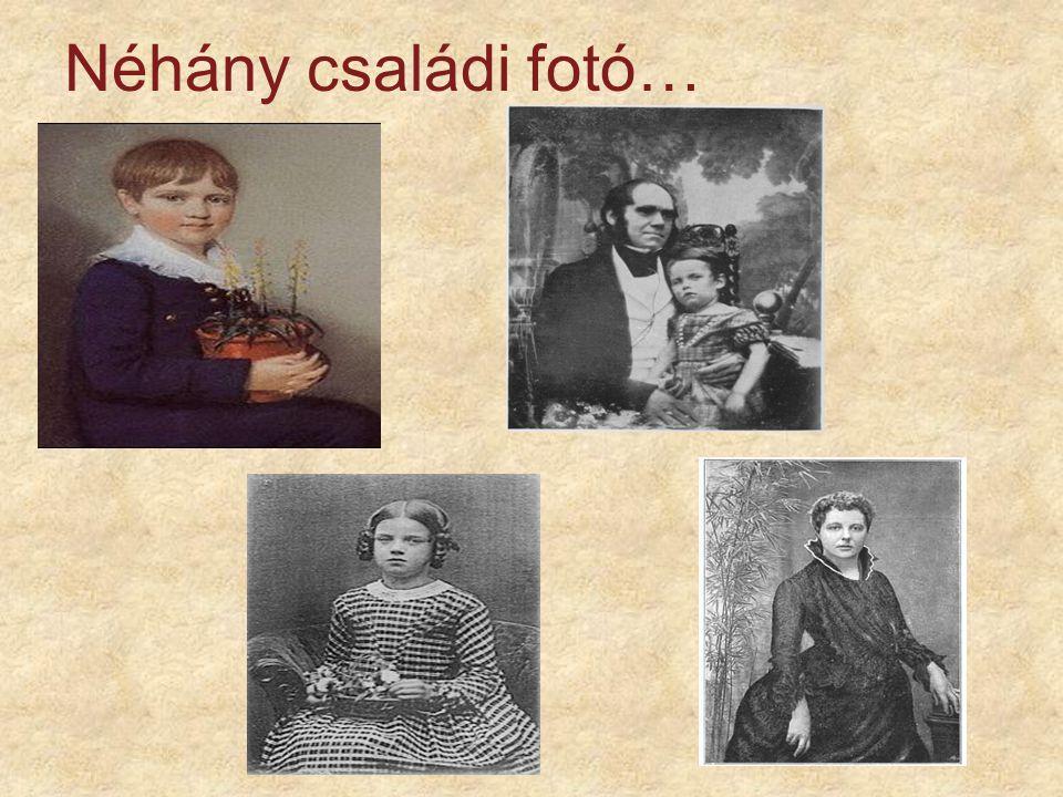 Néhány családi fotó…