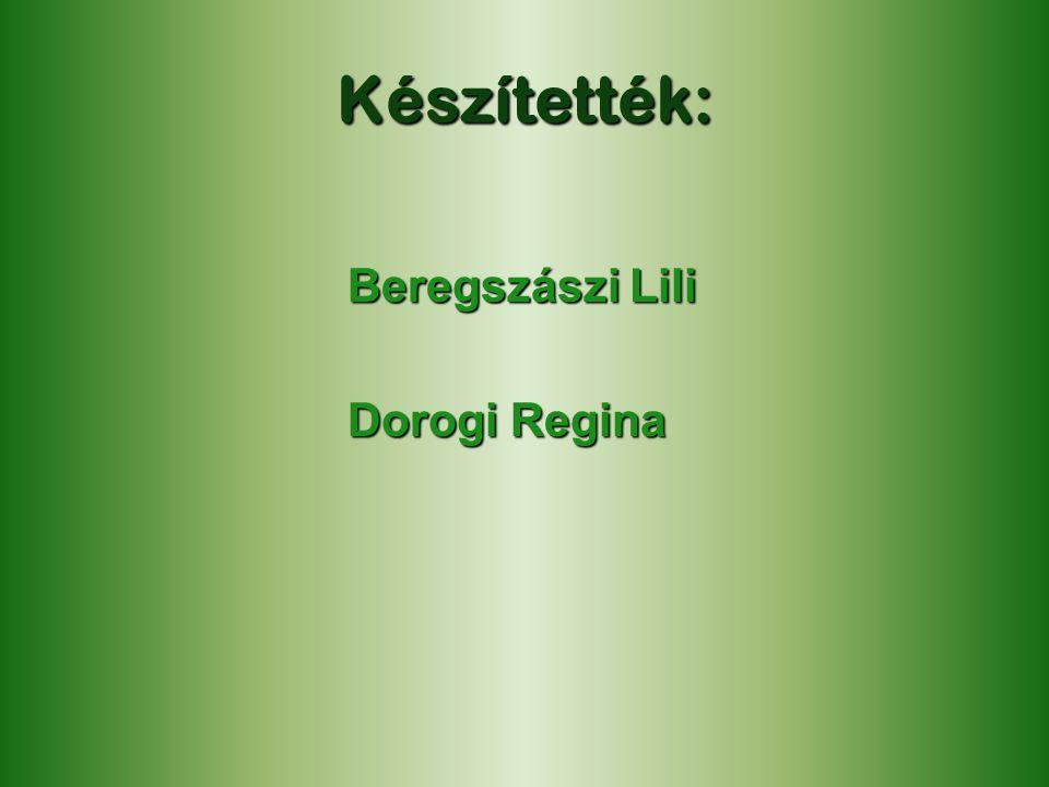 Készítették: Beregszászi Lili Dorogi Regina