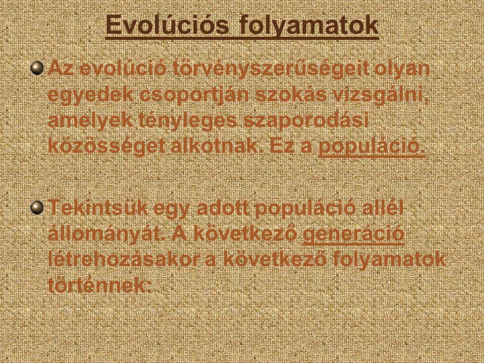 Evolúciós folyamatok