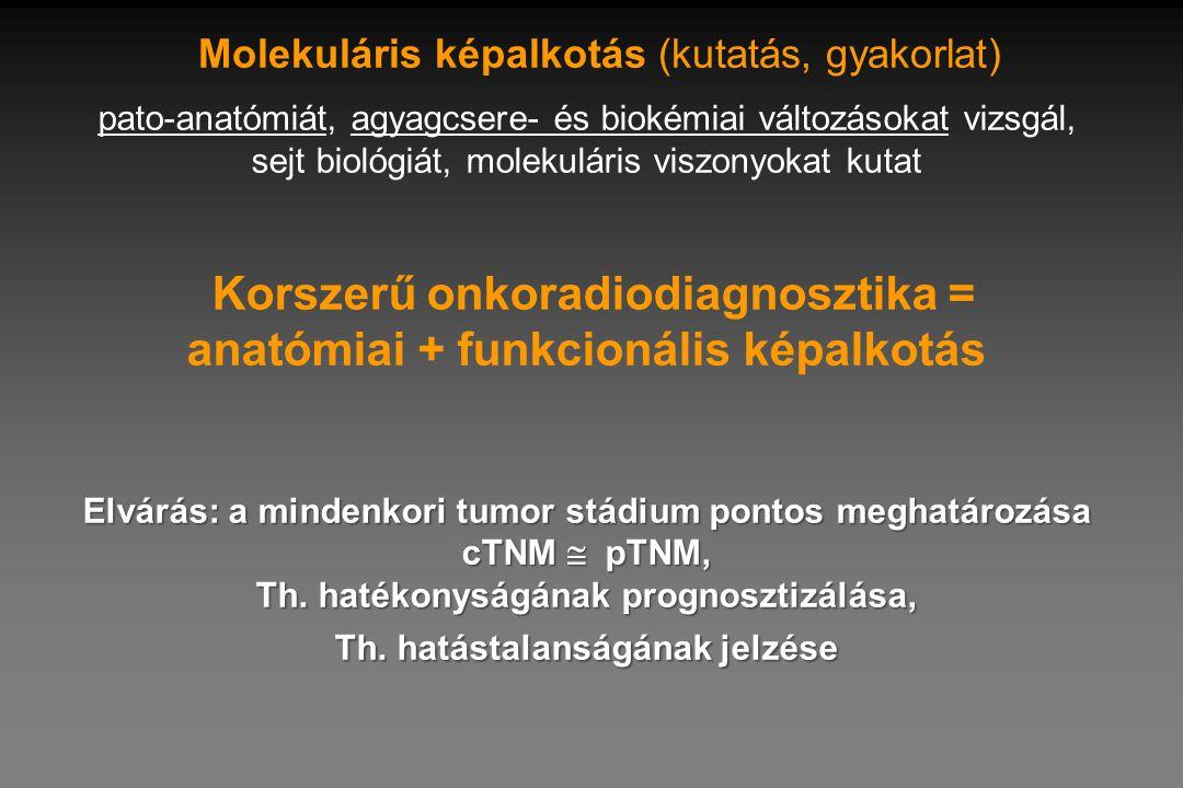 Molekuláris képalkotás (kutatás, gyakorlat)