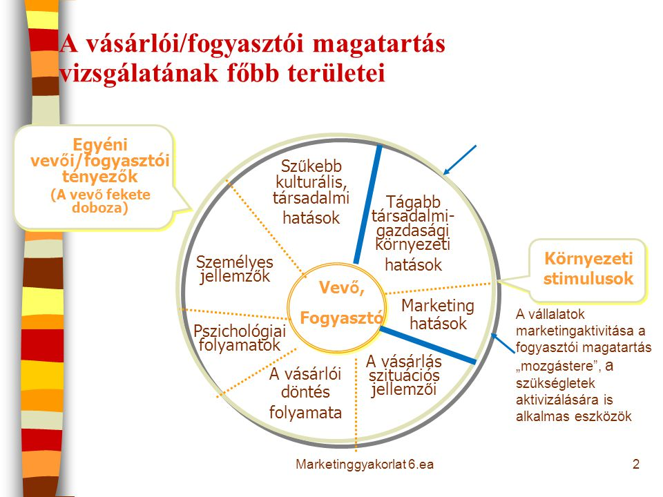 A vásárlói/fogyasztói magatartás vizsgálatának főbb területei