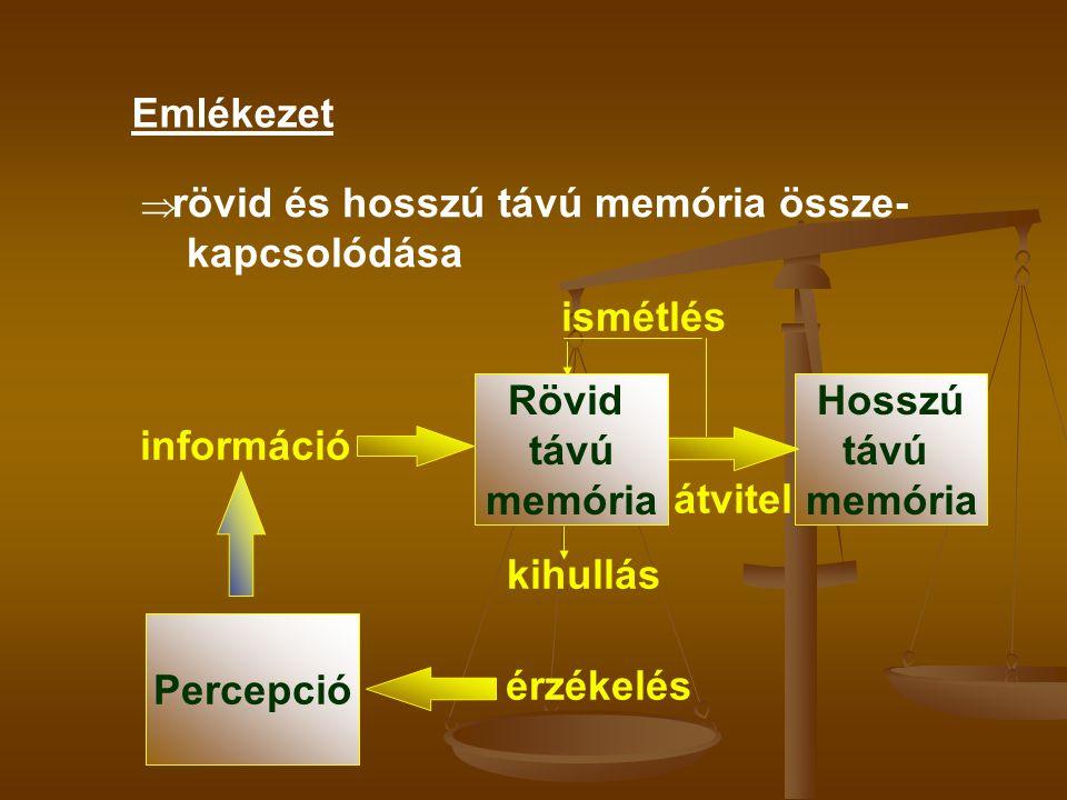 Emlékezet ismétlés Rövid távú memória Hosszú távú memória információ