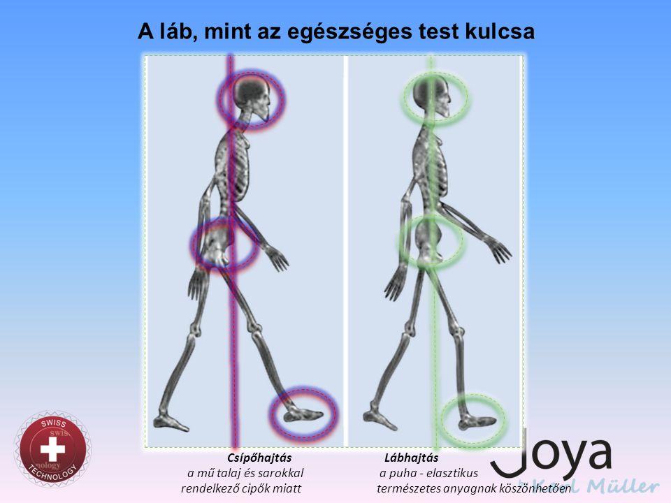A láb, mint az egészséges test kulcsa