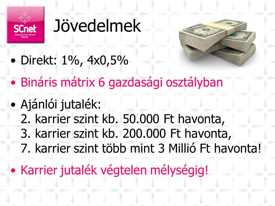 Jövedelmek Direkt: 1%, 4x0,5% Bináris mátrix 6 gazdasági osztályban