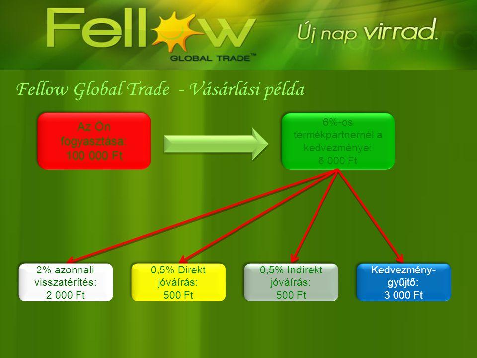 Fellow Global Trade - Vásárlási példa