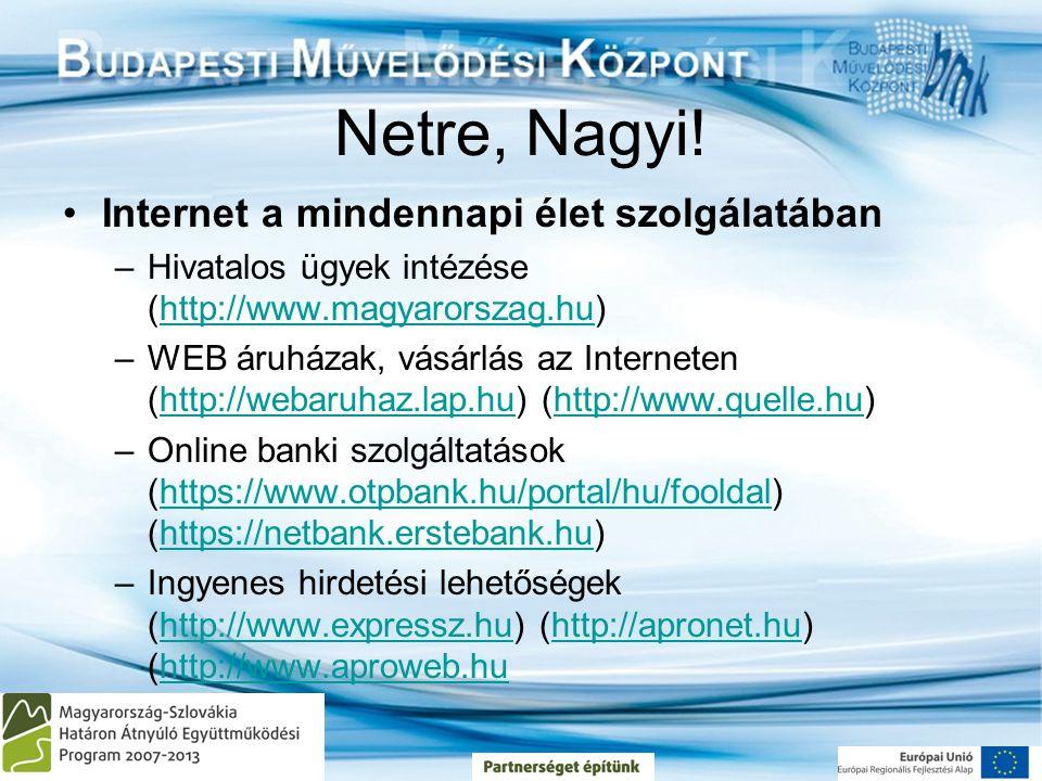 Netre, Nagyi! Internet a mindennapi élet szolgálatában