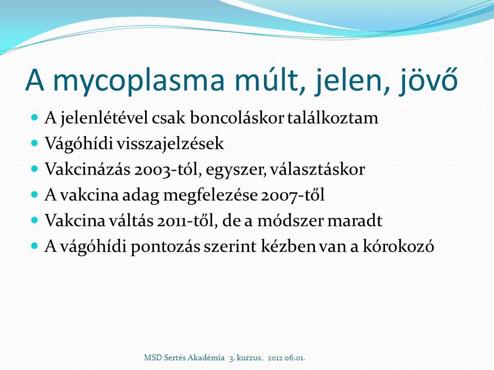 A mycoplasma múlt, jelen, jövő