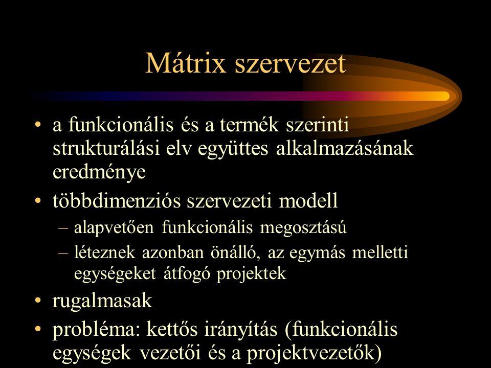 Mátrix szervezet a funkcionális és a termék szerinti strukturálási elv együttes alkalmazásának eredménye.