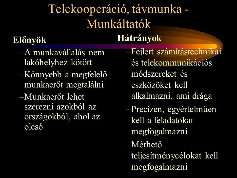 Telekooperáció, távmunka - Munkáltatók