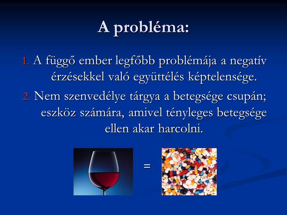 A probléma: 1. A függő ember legfőbb problémája a negatív érzésekkel való együttélés képtelensége.