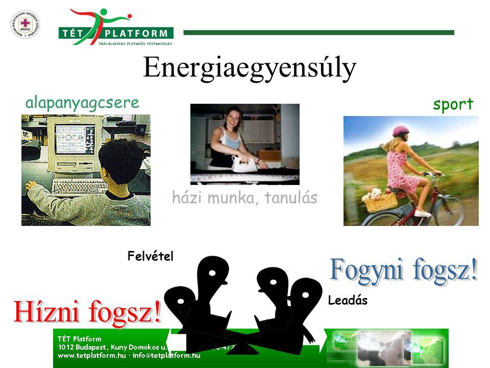 Energiaegyensúly Fogyni fogsz! Hízni fogsz! alapanyagcsere sport