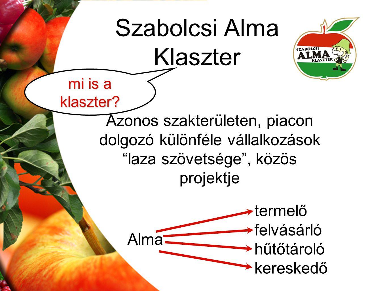 Szabolcsi Alma Klaszter